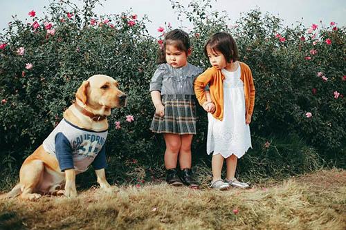 """Chùm ảnh """"2 cô bé sợ chó biểu cảm dễ thương"""" gây sốt cộng đồng mạng"""