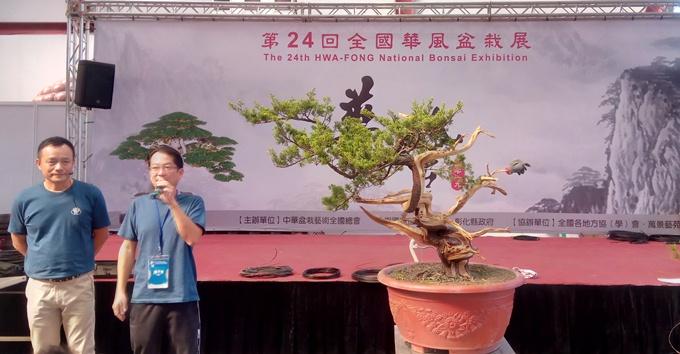 """Dàn """"người mẫu"""" bonsai Đài Loan cực khủng sắp """"đổ bộ"""" về Sài thành"""