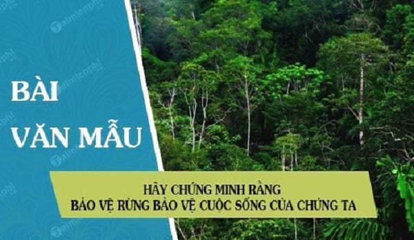 Top 10 Bài văn chứng minh rằng bảo vệ rừng là bảo vệ cuộc sống của chúng ta (lớp 7) hay nhất