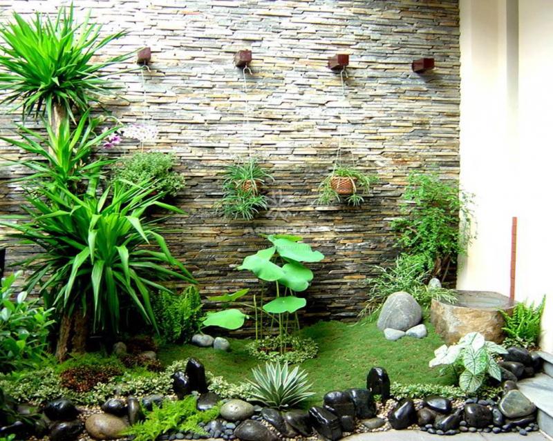 Top 7 địa chỉ bán đất sạch trồng rau đảm bảo nhất ở Hà Nội
