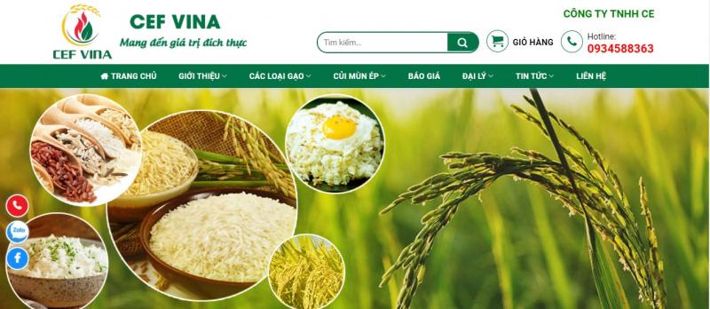 Top 6 đại lý bán gạo giá rẻ và uy tín nhất ở Hà Nội