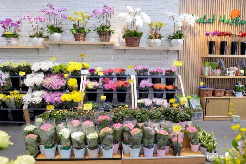 Top 8 Shop hoa tươi đẹp, chất lượng nhất tại Đà Lạt