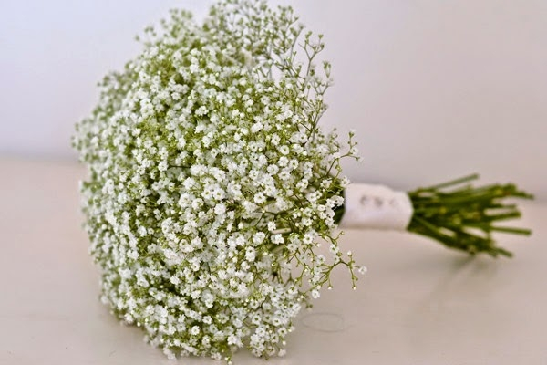 Top 10 Loại hoa chụp kỉ yếu đẹp nhất