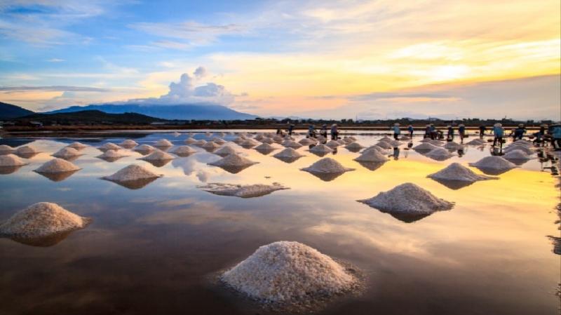 Top 10 Cánh đồng muối đẹp nhất Việt Nam