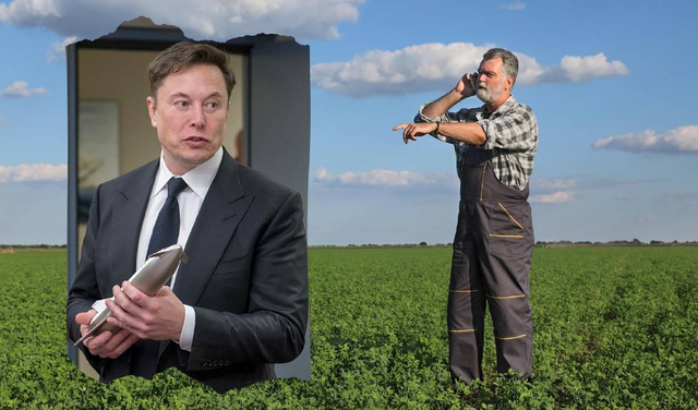 Hơn một nửa số người Úc nghĩ rằng Elon Musk đã phát minh ra Bitcoin