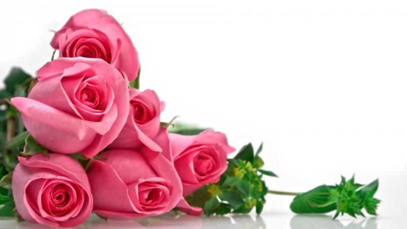 Top 19 Món quà tặng bạn gái ngày 8/3 ý nghĩa nhất