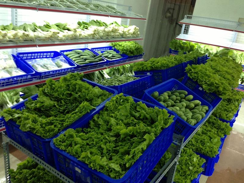 Top 15 Cửa hàng rau sạch uy tín nhất tại Hà Nội