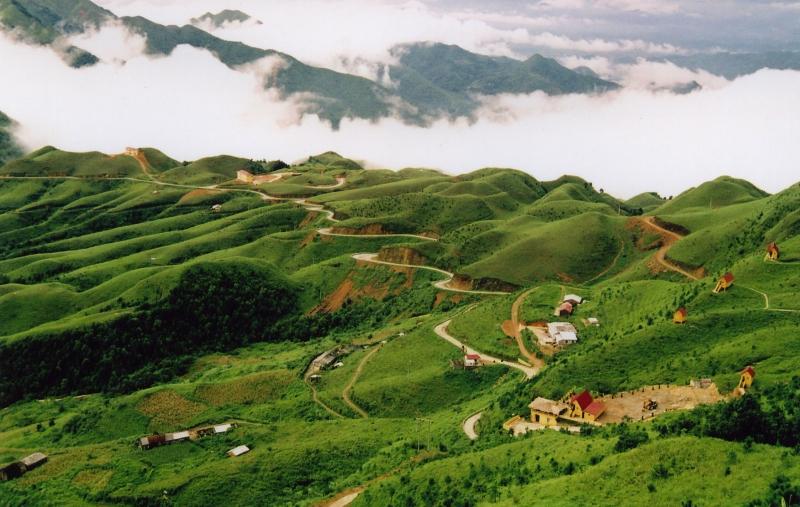 Top 10 Thương hiệu rượu đặc sản nổi tiếng nhất Việt Nam