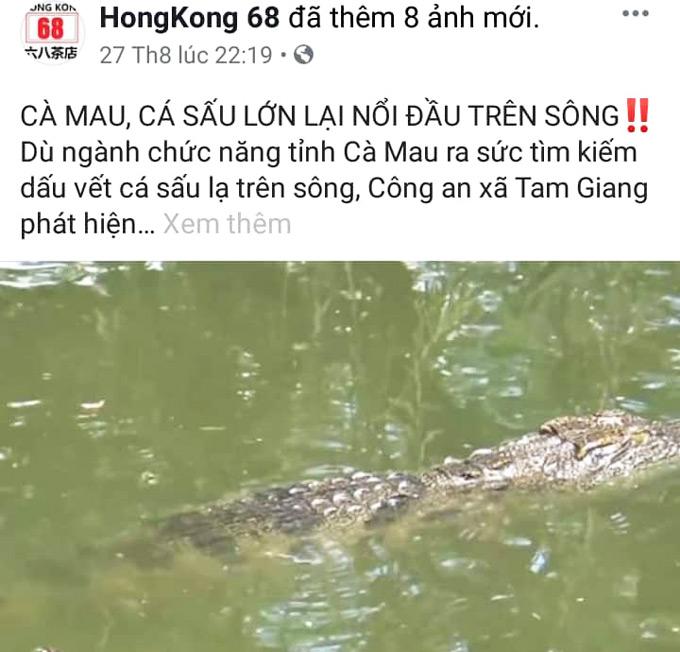 Đăng tin cá sấu nổi trên sông lên Facebook để câu like