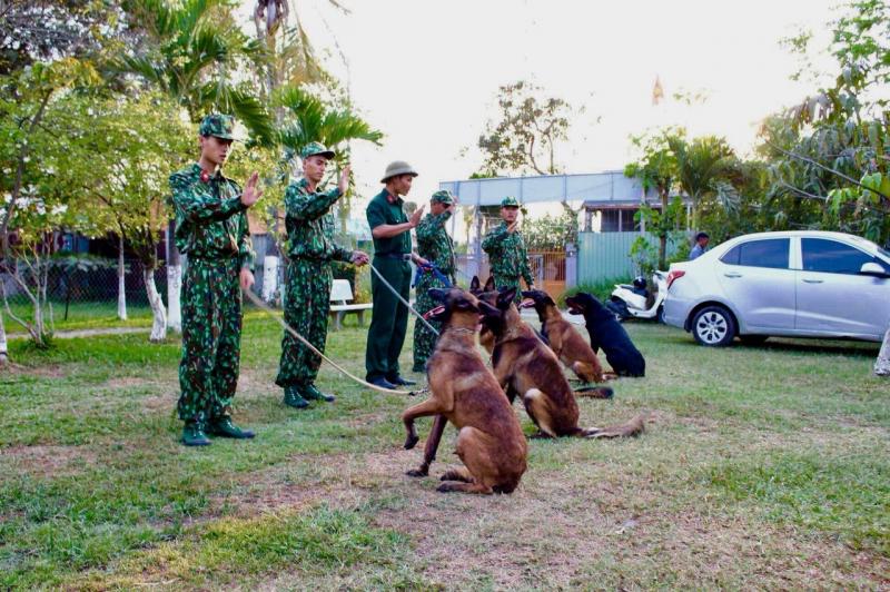 Top 5 Trung tâm huấn luyện chó uy tín và chuyên nghiệp nhất ở TPHCM