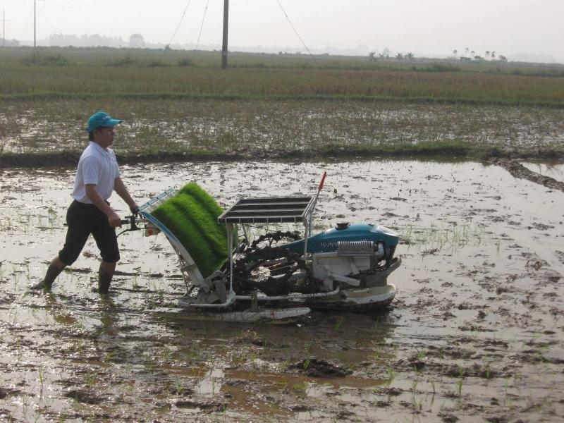 Top 7 Xã nghèo nhất huyện Sóc Sơn, Hà Nội