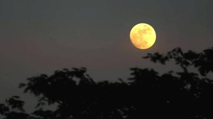 Top 8 Bài giải thích ý nghĩa nhan đề bài thơ Ánh trăng (Nguyễn Duy) (Ngữ Văn 9) hay nhất