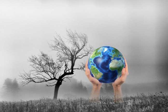 Top 10 Bài văn nghị luận xã hội về biến đổi khí hậu (lớp 12) hay nhất