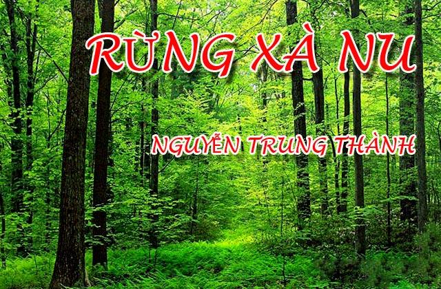 """Top 12 Bài văn phân tích hình tượng rừng xà nu trong """"Rừng xà nu"""" của Nguyễn Trung Thành"""
