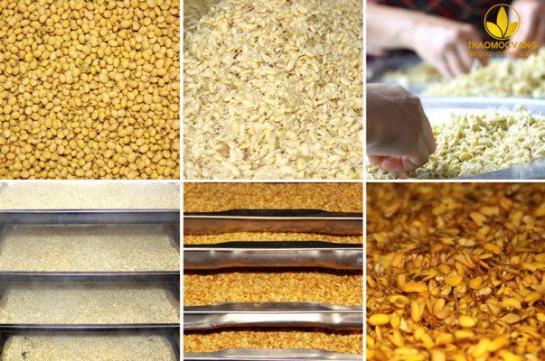 Top 8 Sản phẩm mầm đậu nành chất lượng nhất hiện nay