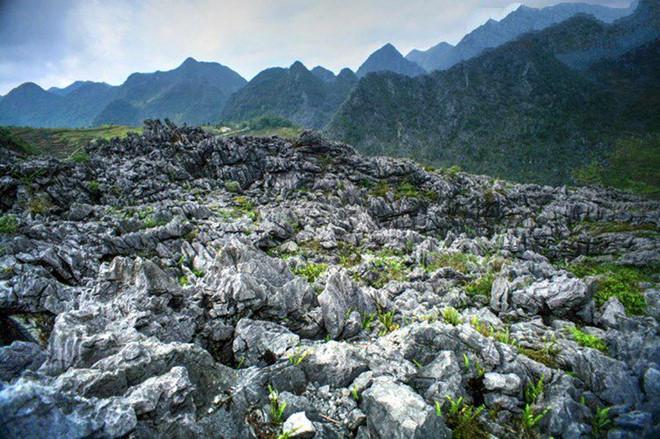 Cao nguyên đá Hà Giang
