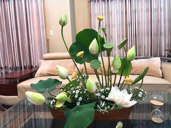 Top 10 Cách giữ hoa tươi lâu đơn giản tại nhà