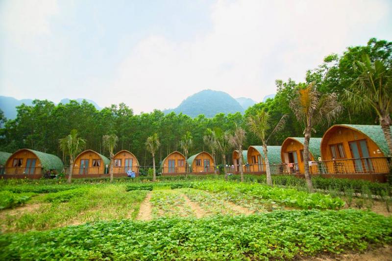 Top 10 Khách sạn đẹp nhất bạn nên lựa chọn khi đến với Phong Nha – Kẻ Bàng