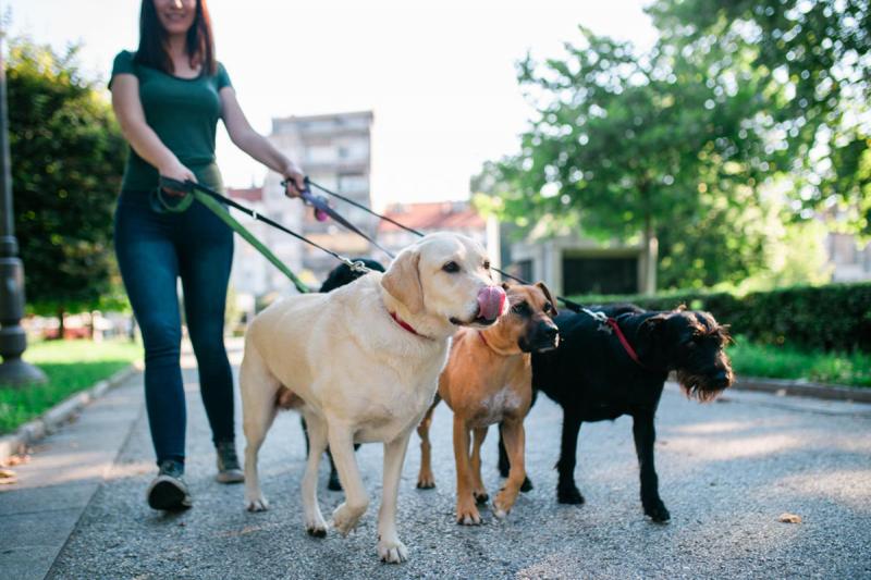 Top 9 Sai lầm khi đi bộ mà chúng ta vô tình mắc phải có thể ảnh hưởng đến sức khỏe.