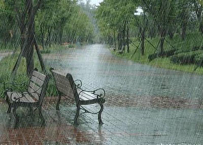 Top 10 Bài văn tả cơn mưa hay nhất