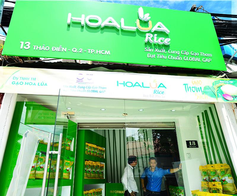Top 7 đại lý bán gạo giá rẻ và uy tín nhất ở TPHCM
