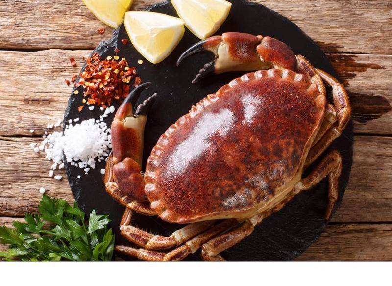 Top 6 địa chỉ bán hải sản tươi sống chất lượng tại Hà Nội