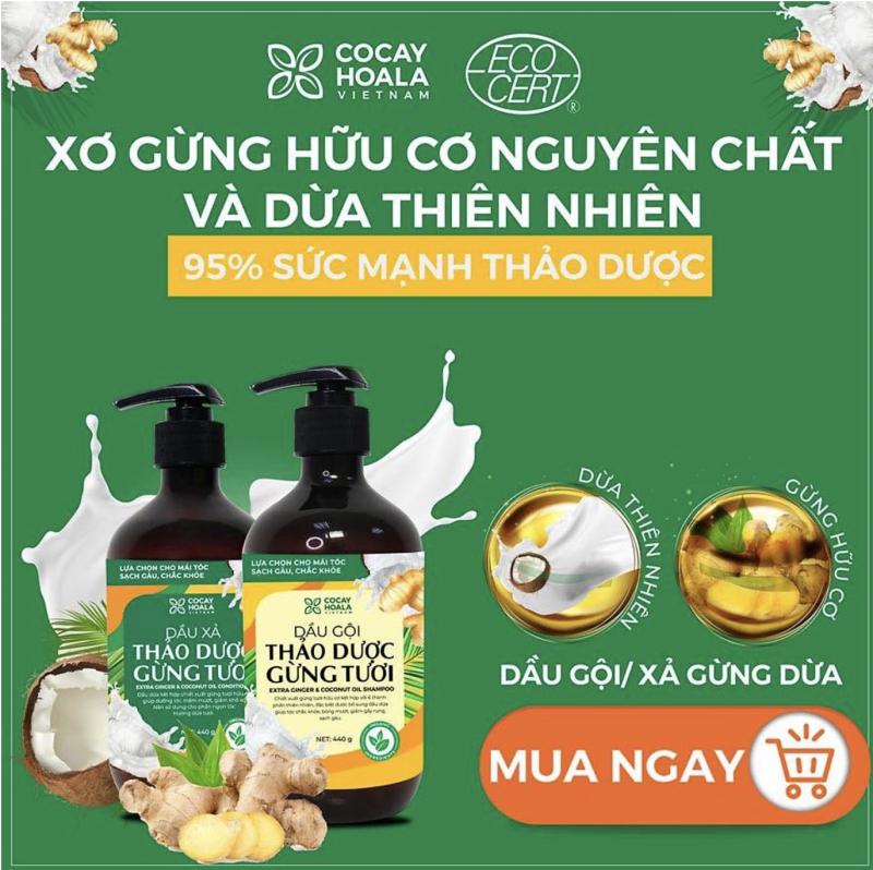 Top 13 Sản phẩm dầu gội thảo dược tốt nhất Việt Nam