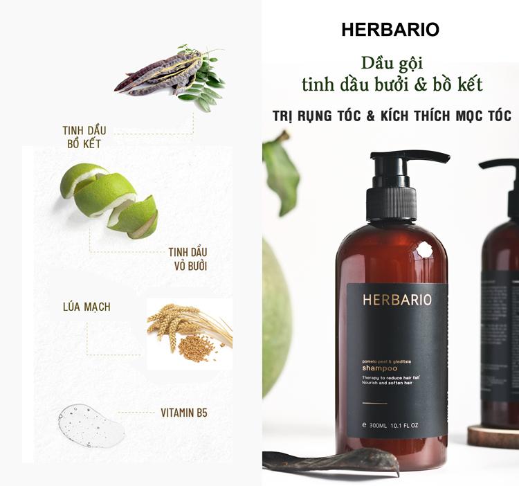 Top 11 Sản phẩm dầu gội kích thích mọc tóc hiệu quả nhất