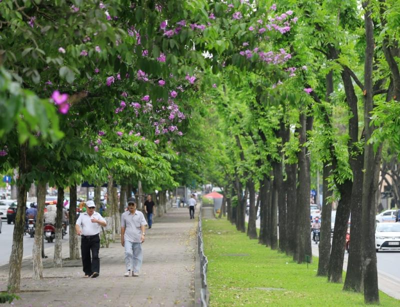Top 12 địa điểm chụp ảnh đẹp nhất ở Hà Nội vào mùa hè
