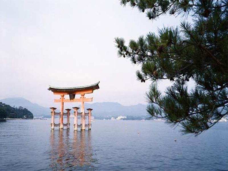 Hố Biwa rộng lớn, thoáng đãng du khách sẽ đắm chìm vào khung cảnh nên thơ, quên đi ưu phiền mệt mõi