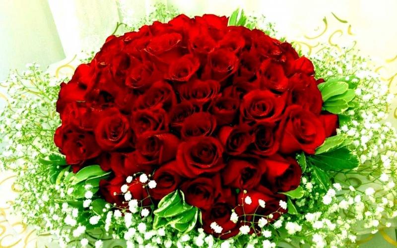 Top 11 Loài hoa đẹp và phù hợp nhất cho ngày chụp kỷ yếu