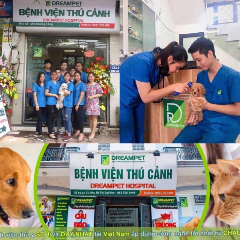 Top 9 Dịch vụ spa thú cưng tốt nhất tại quận Hoàng Mai, Hà Nội