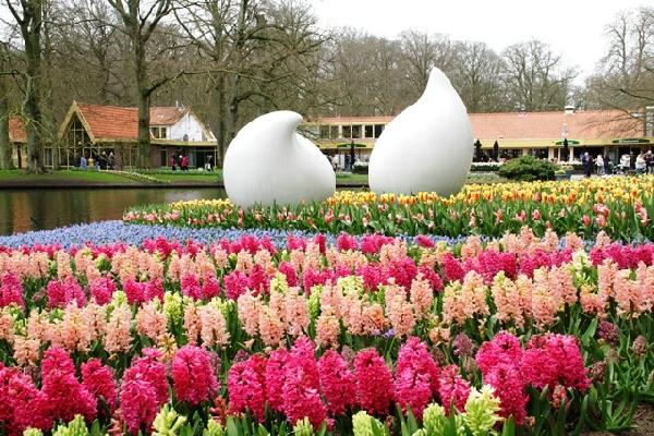 Top 10 địa điểm đẹp nhất Hà Lan bạn không thể bỏ qua