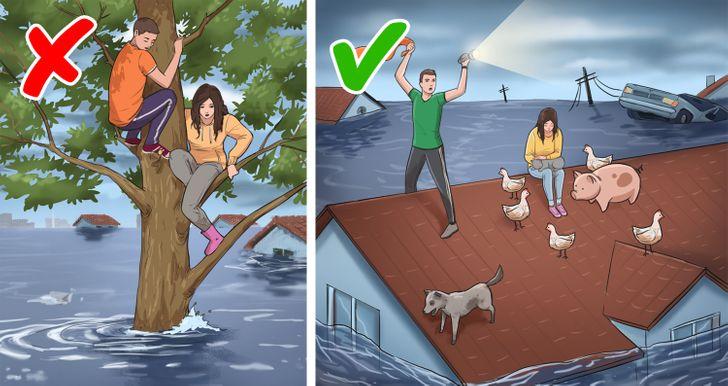 Top 11 Lầm tưởng về cách phản ứng trong tình huống nguy cấp và việc làm cần thay thế.