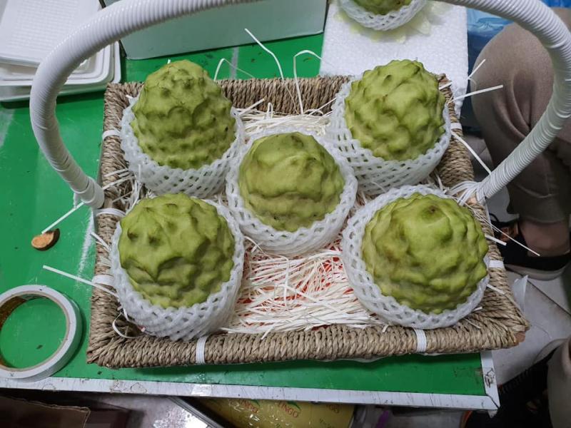 Top 4 Cửa hàng trái cây sạch và an toàn tại Thái Bình