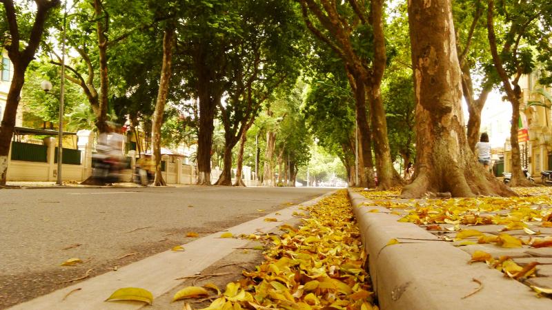 Top 20 Đặc điểm đáng nhớ nhất ở Hà Nội