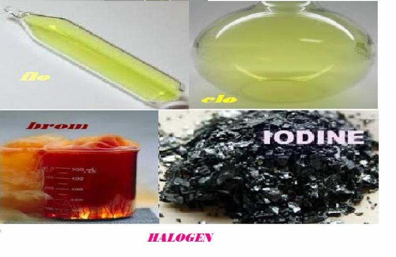 Top 7 điều thú vị về nhóm Halogen trong hóa học có thể bạn muốn biết