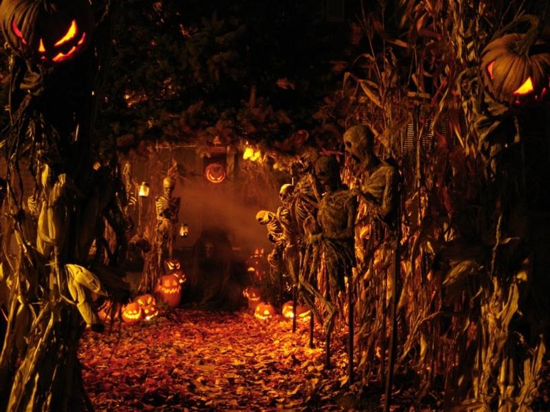 Top 8 Sự thật thú vị về Halloween