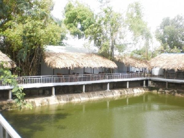 Top 13 Địa điểm câu cá lý tưởng nhất ở Sài Gòn bạn nên đến