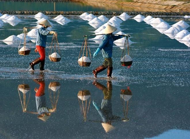 Top 5 Đặc trưng thú vị nhất tại vùng đất nắng gió Ninh Thuận
