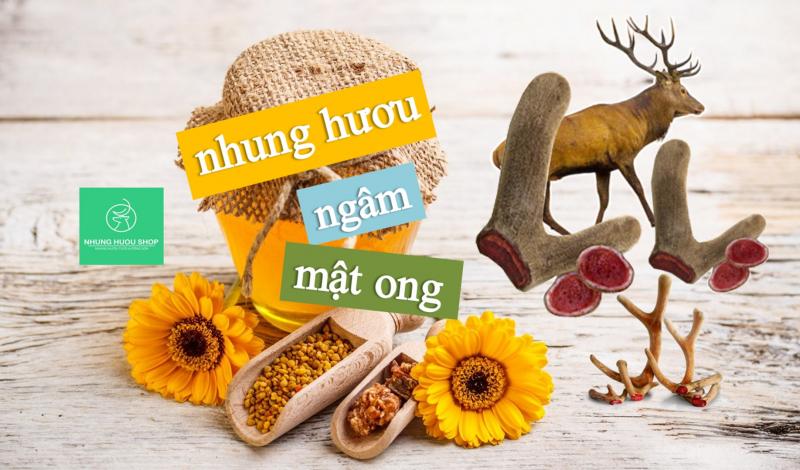 Top 5 Cửa hàng bán Nhung Hươu chất lượng và uy tín nhất ở TP.HCM