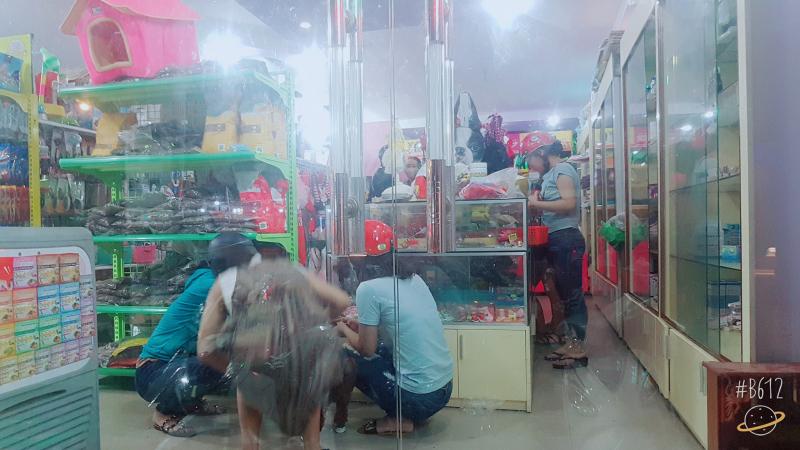 Top 7 Địa chỉ bán phụ kiện thú cưng tốt nhất tại TP. Biên Hòa, Đồng Nai.