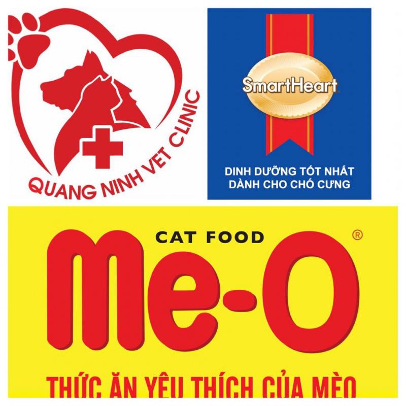 Top 5 địa chỉ chăm sóc sức khỏe cho thú cưng tại Quảng Ninh