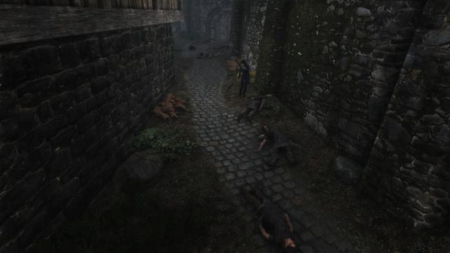 Game thủ rảnh nhất năm: Quét sạch hơn 2000 NPC, gần 2500 sinh vật trong Skyrim để được 1 mình 1 cõi