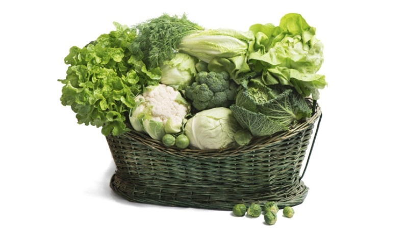 Top 15 Loại thực phẩm bảo vệ da khỏi tia tử ngoại tốt nhất