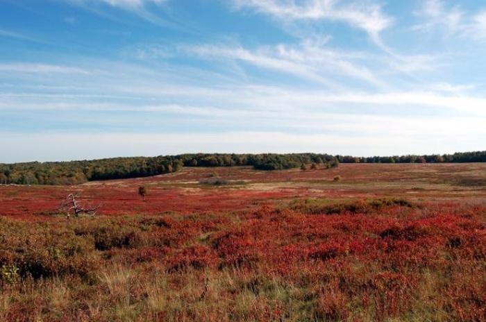 Top 16 Công viên đẹp nhất thế giới vào mùa thu