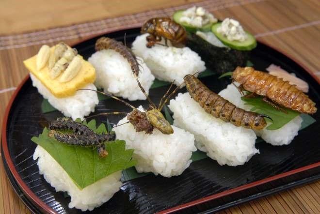 Top 11 Món ăn kinh dị chỉ có  ở Nhật Bản bạn sẽ không tin nó có thật