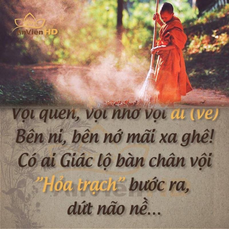 Top 20 Bài thơ hay về Phật giáo