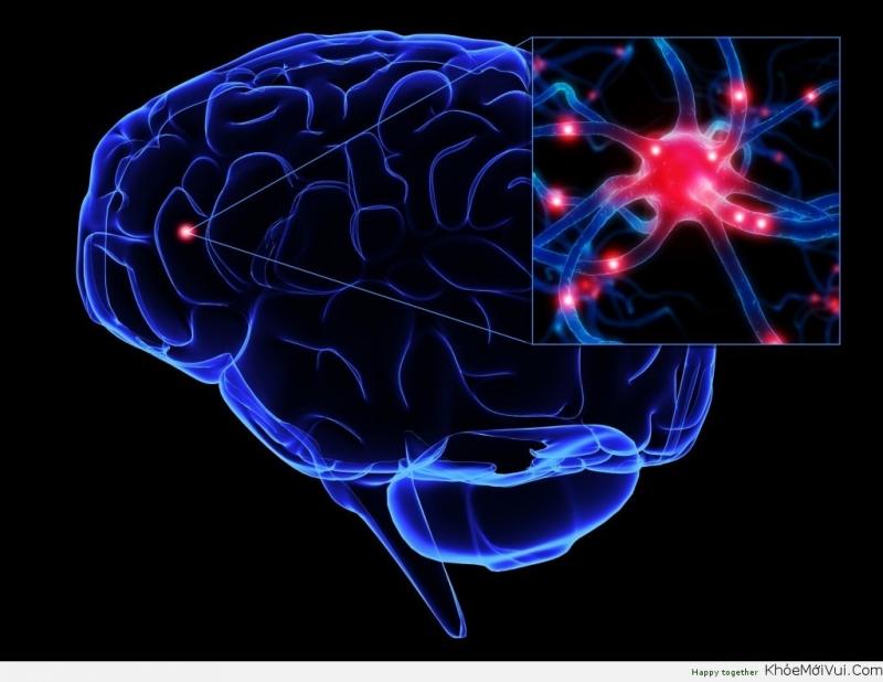 Top 10 Yếu tố quyết định trí thông minh của con người