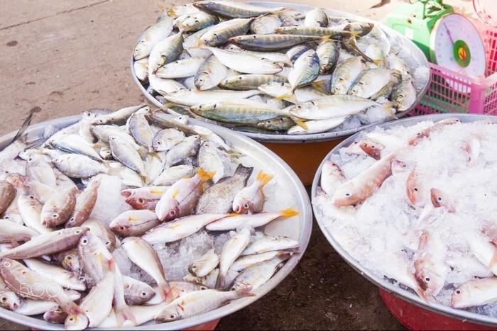 Top 4 Thiên đường hải sản tuyệt nhất Việt Nam